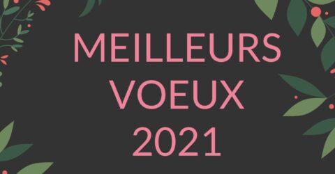 Image : Vœux 2021 - Treize-Septiers